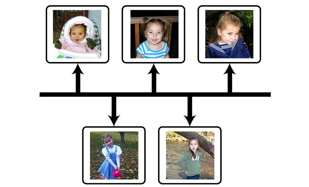Abby's Light Memorial Foundation Timeline